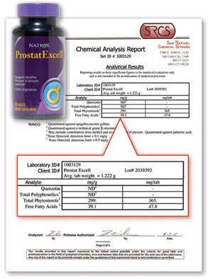 Prosta Excell Lab Report
